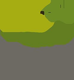 ZauggPlus